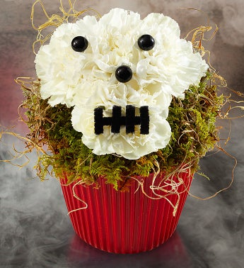 Bad to the Bones Cupcake?