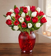 Jolly Holiday Tulips, 30 for $30