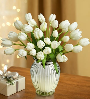 Winter Snowflake Tulips
