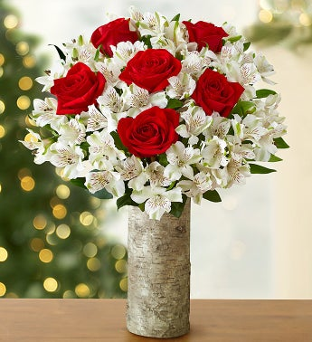 Glad Tidings Rose & Peruvian Lily