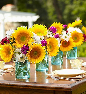 Sunflower Medley Party Pack