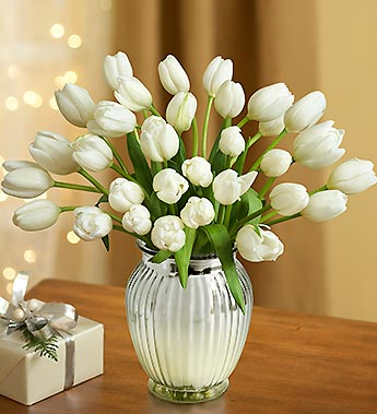 Winter White Tulips, 30 Stems
