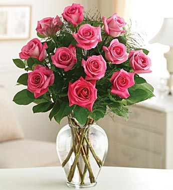 Rose Elegance