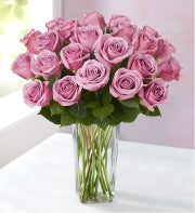 Passion for Purple Roses 12-24 Stems + Free Vase