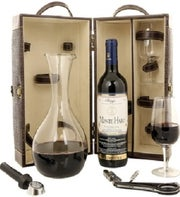 Wine and Decanter Travel Case