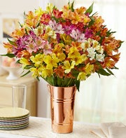 Peruvian Lilies, 50-100 Blooms