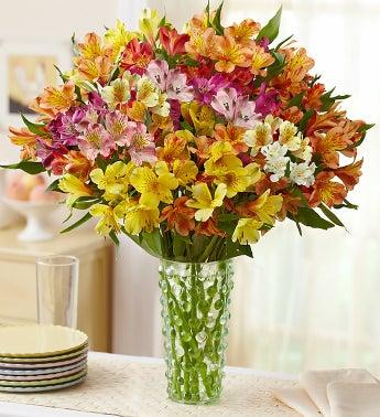 Gemstone Peruvian Lilies