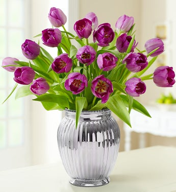 Signature Purple Tulips, 20 Stems