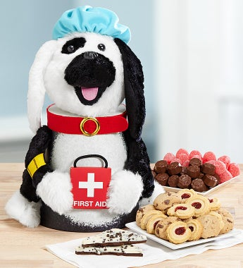 To The Rescue! Dog Lover's Get Well Treats Gift