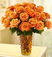 Sunrise Roses, 12-24 Stems