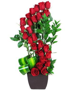 24 Red Rose Spiral