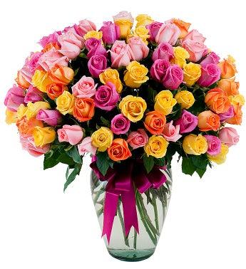 Multicolor Roses