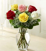 Love's Embrace? Roses - Assorted