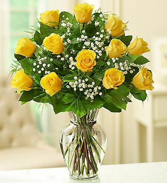 Rose Elegance? Premium Long Stem Yellow Roses
