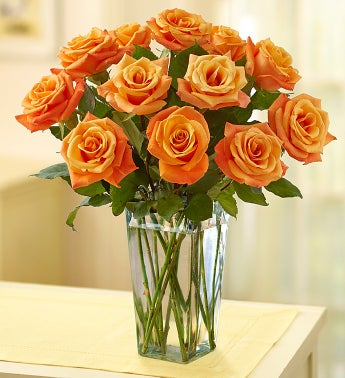 Sunrise Orange Roses,12-24 Stems