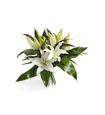 Wonderfully White Lilies