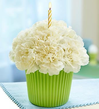 white carnations in reusable cupcake cup