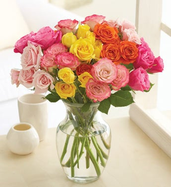assorted spray roses, 50-100 blooms