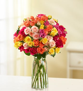 Spray Roses, Buy 50, Get 50 Free