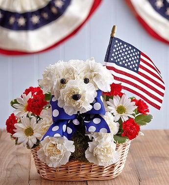 Yankee Doodle Doggie?