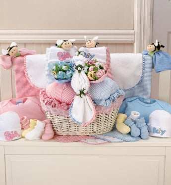 Twin Newborn Gift Basket