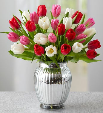 Sweetest Love Tulips, 15-30 Stems