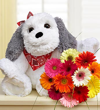 Big Doggie with Daisies