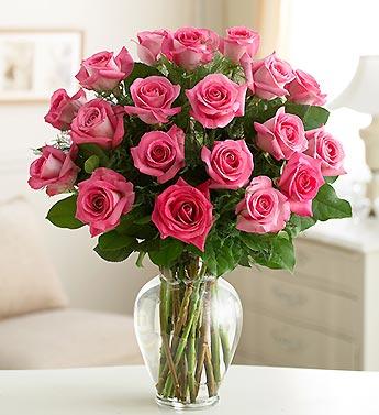 Rose Elegance? Pink Roses
