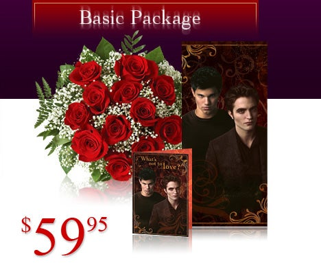 Basic Package - $49.95